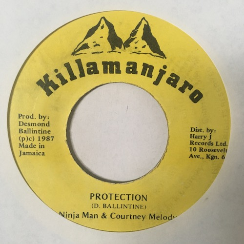 Ninja Man & Courtney Melody – Protection