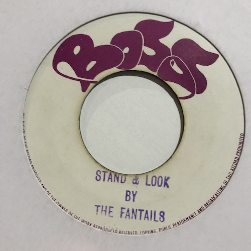The Fantails – Stand & Look