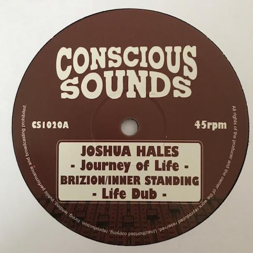 Joshua Hales – Journey Of Life