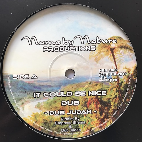 Dub Judah - It Could Be Nice / Smoke And Mirrors And Credit Card
